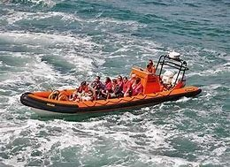 Image result for padstow boat trip