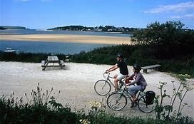 Image result for padstow camel trail cycling